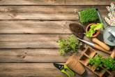 Ferramentas de jardinagem, plantas e mudas em um solo de madeira
