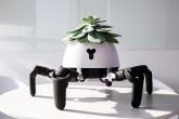 robô em formato de aranha, com estrutura branca e pernas pretas e uma suculenta na parte superior