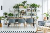 sala de jantar com mesa de madeira e cadeiras com estofado cinza. Estante com diversas plantas