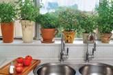9-dicas-sustentabilidade-quarentena-03