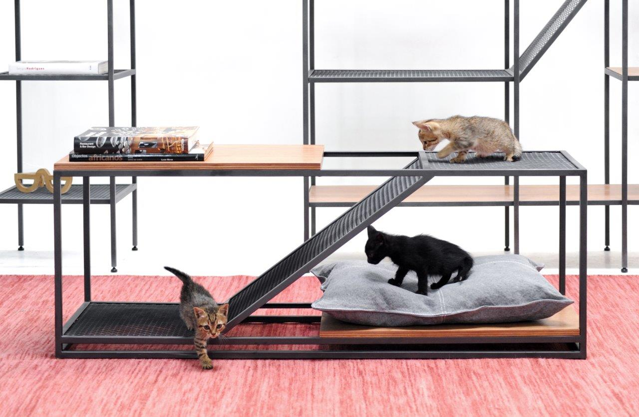 Três gatinhos brincando em uma caminha decorativa no estilo industrial.