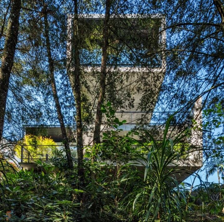 Projeção em formato de paralelepípedo de base retangular em concreto atrás de vegetação