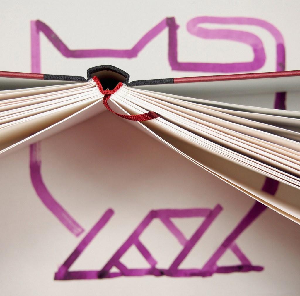 Gato lilás com um livro aberto fotografado de cima com as páginas representando os bigodes