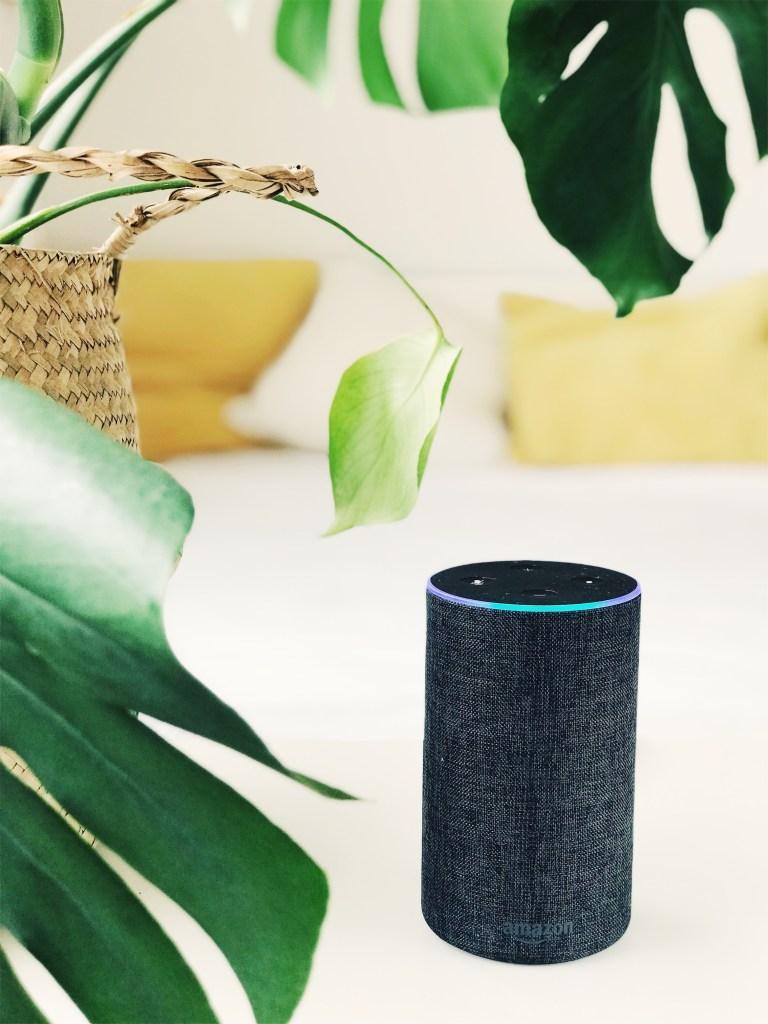 Assistente digital Alexa com folhas verdes pendendo acima.
