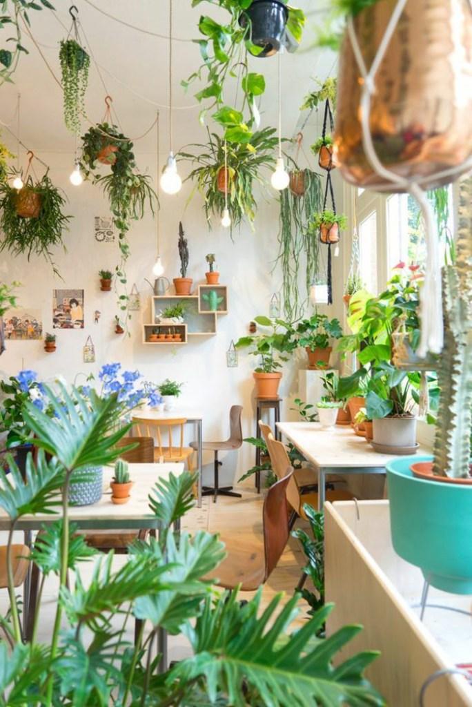 Ambiente com mesas e cadeiras com vários vasos de folhagens, flores e samambaias. No teto, várias cordas com samambaias penduradas.