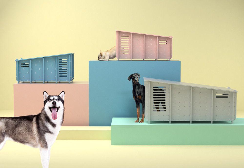 casa de cachorro para cães de porte grande e para espaços externos