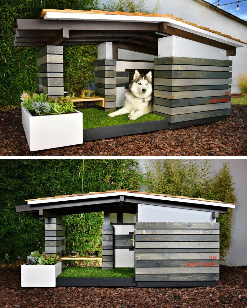 Casinha de cachorro com cara de casa de campo