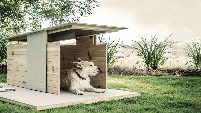 Casinha de cachorro feita de madeira com design moderno
