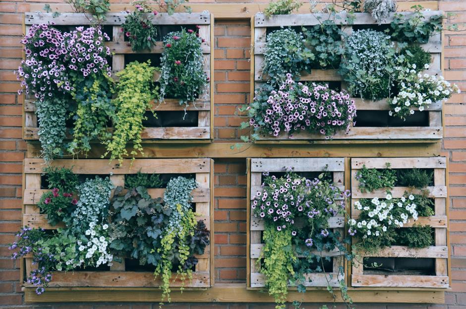 Jardim vertical com plantas em parede de tijolo laranja