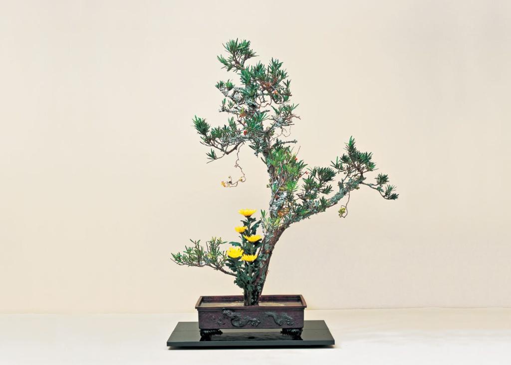 Ikebana com galho e flores amarelas