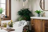 plantas-banheiro-bloomscape-01