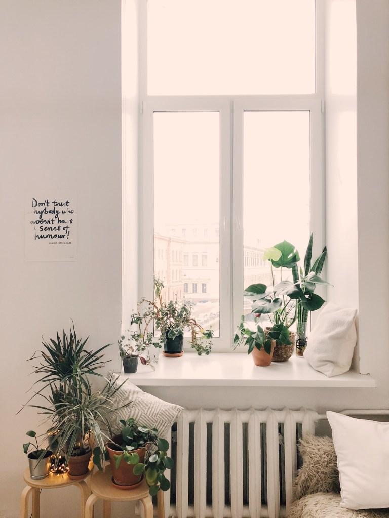 Bay window com vasinhos de plantas.