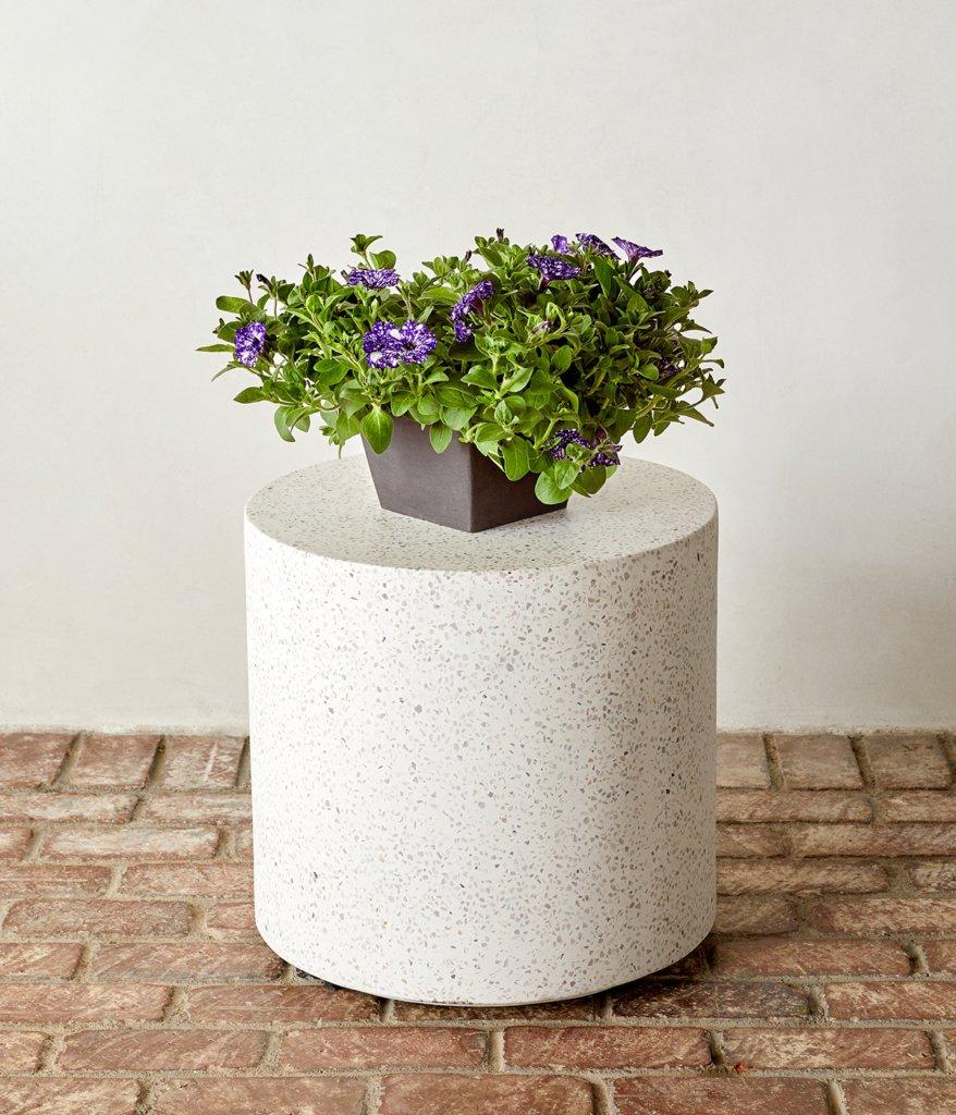 7-plantas-seguras-para-criancas-casa.com-7-cascata-grandiflora-petunias-roxa