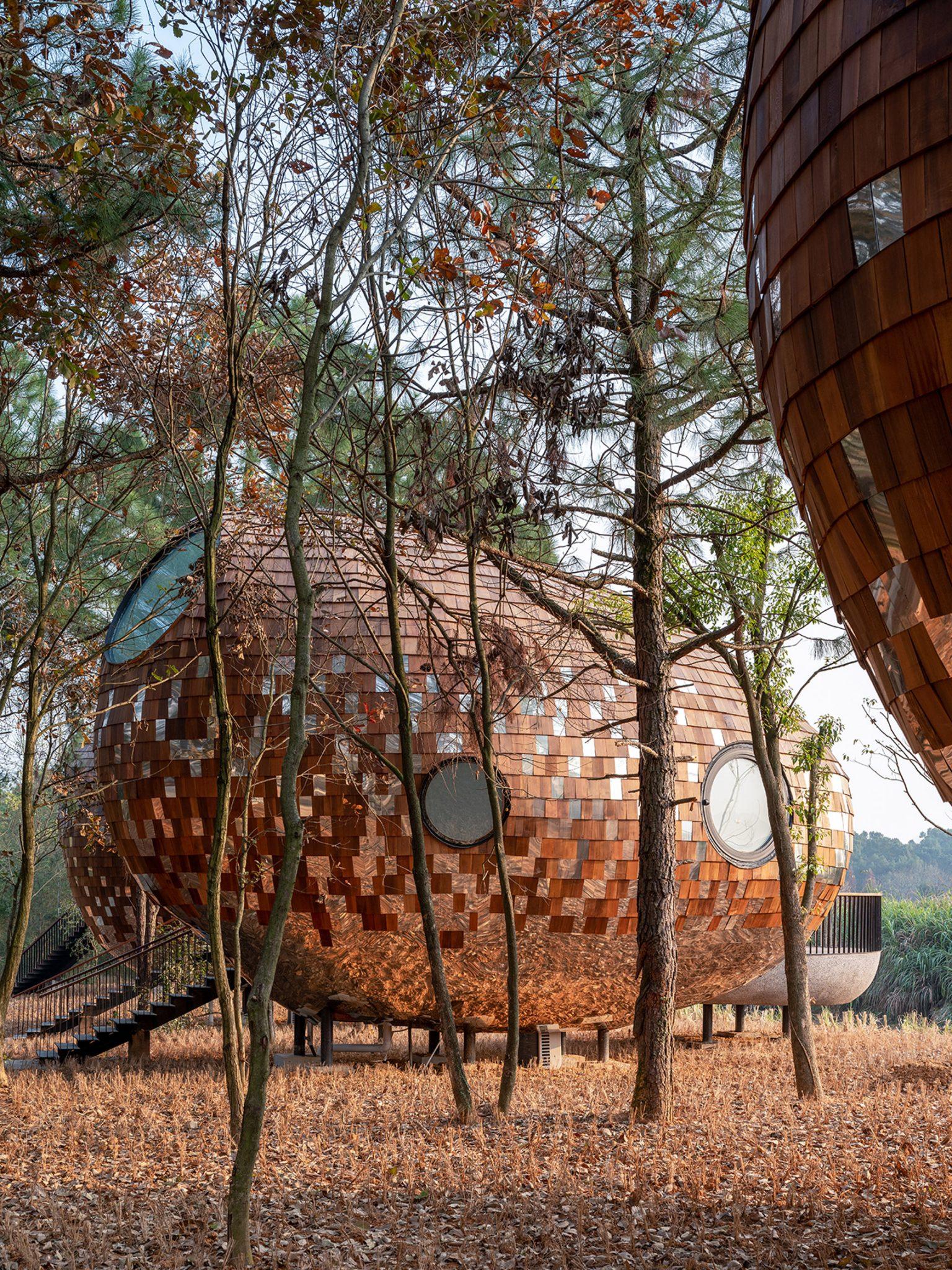 Floresta na China é repleta de cabanas em forma de semente