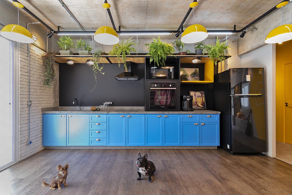 Copa com armários azuis. Luminárias amarelas. Geladeira preta. Fogão preto. Piso laminado. Dois cachorrinhos no chão.