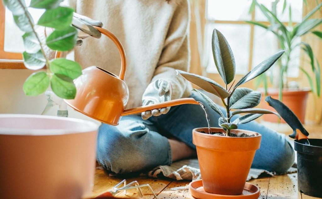 Pessoa com calça jeans e blusa de manga comprida branca sentada no chão regando planta em vaso de barro. Regador cobre.