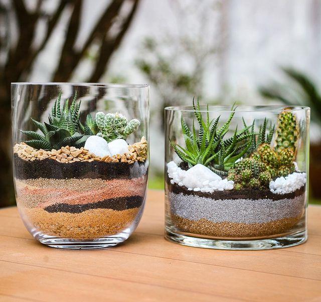 Terrário de vidro com suculentas e cactos sobre mesa