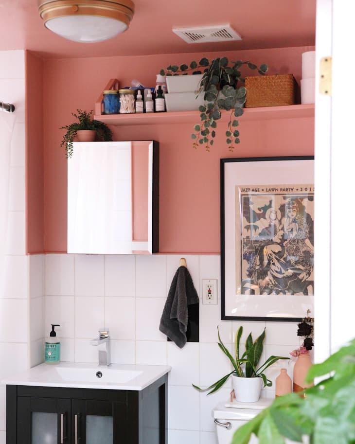 Banheiro com meia parede rosa, com prateleira alta na mesma cor, com itens de banheiro. Um quadro emoldurado e vaso de planta na caixa do vaso