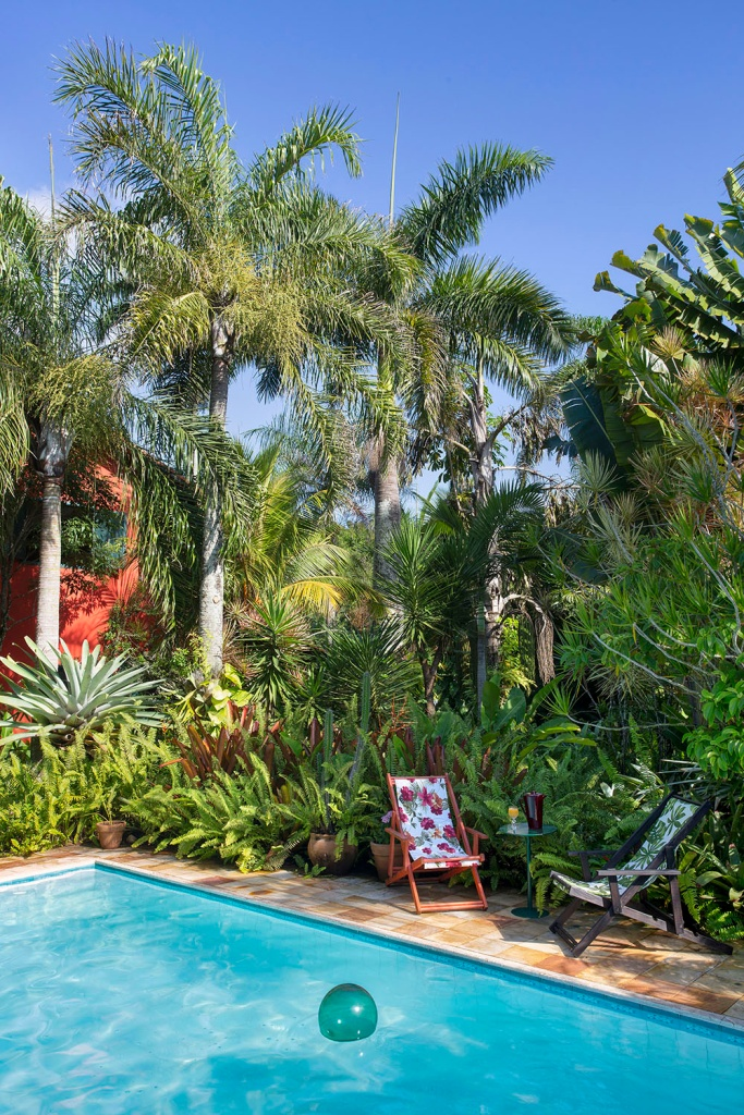 Piscina com duas espreguiçadeiras e palmeiras ao redor