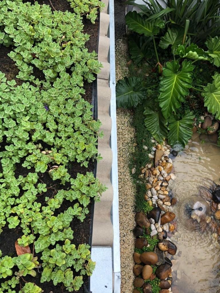Vista de cima de telhado verde que capta água da chuva e lago com águas cinzas abaixo