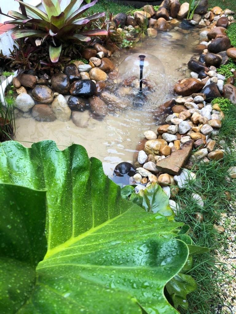 Lago com folhagens e pequena fonte no meio. Pedras em volta