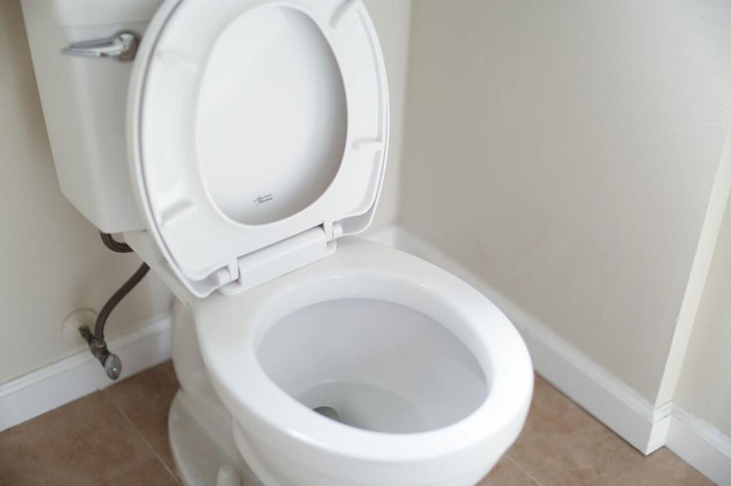Vaso sanitário em banheiro com a tampa aberta