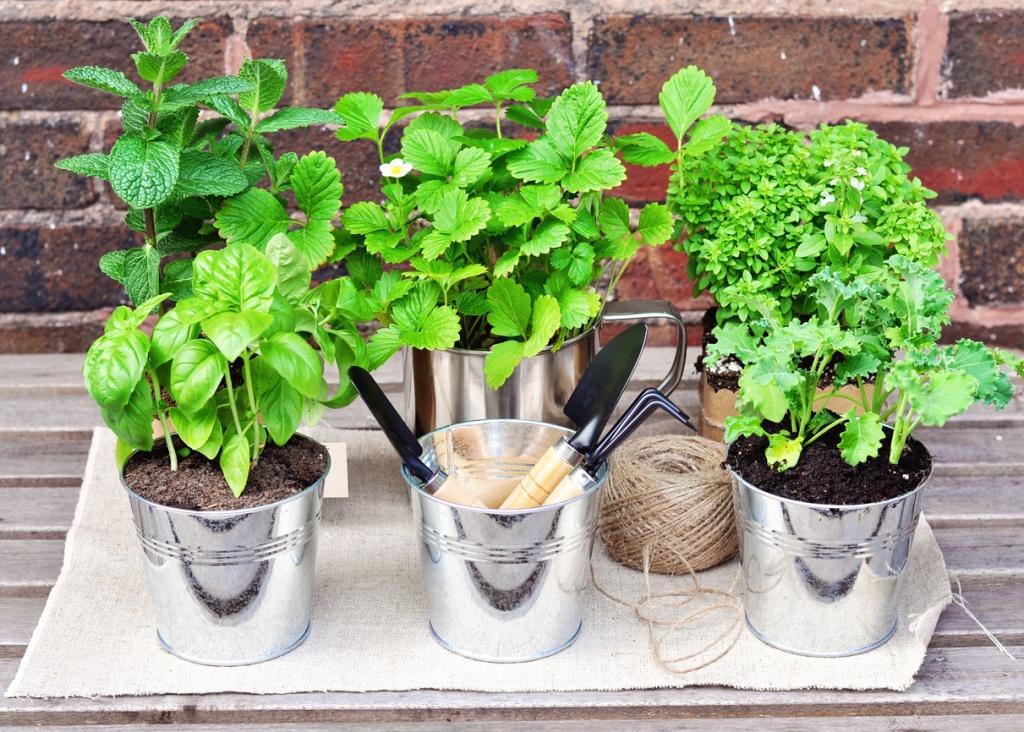 Vasinhos metálicos sobre pedaço de pano. Plantas e utensílios