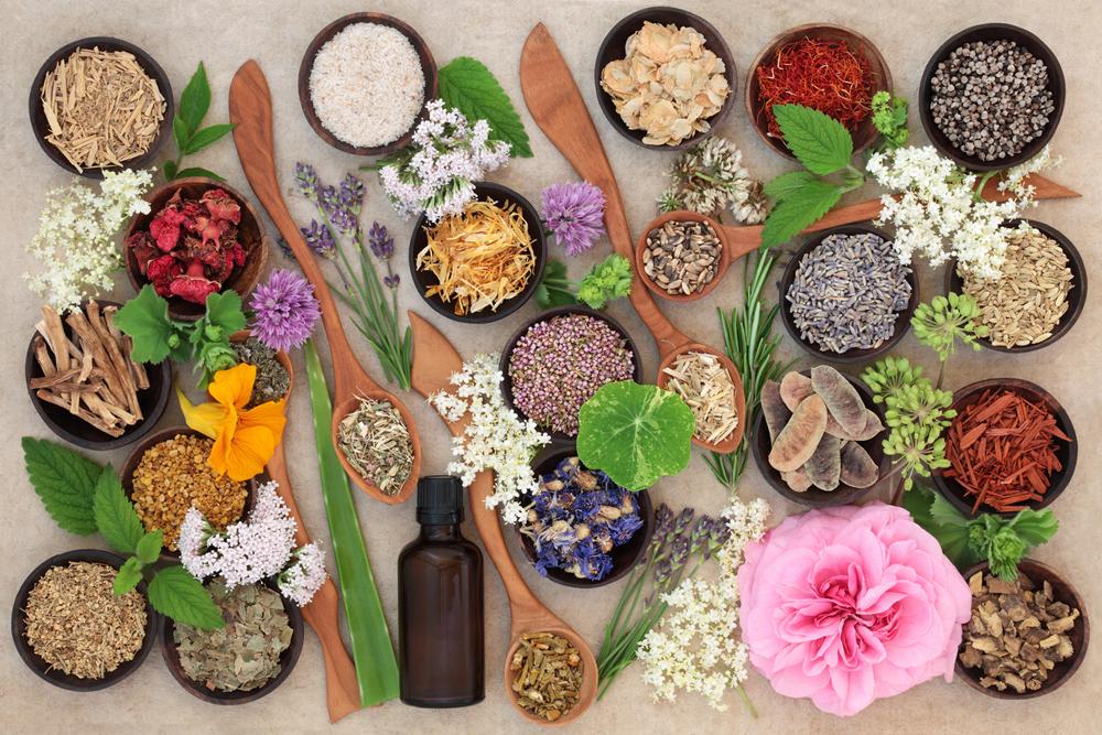 Mesa com potinhos com sementes, grãos e ervas. Flor rosa no canto inferior direito