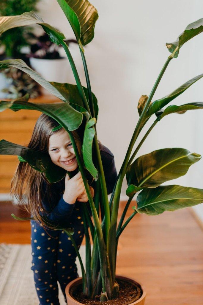 Criança abrançando uma planta de porte grande