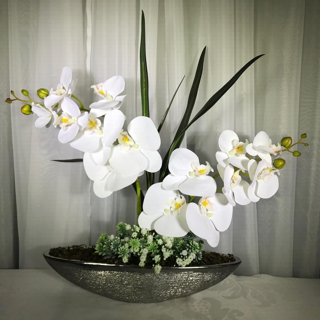orquídea-flores-permanentes