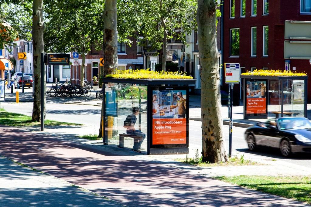 Dois pontos de ônibus com coberturas verdes, um de cada lado de rua
