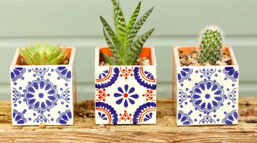 Faça um vaso de azulejos para suas plantinhas