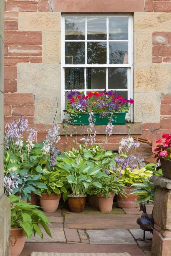 11 jeitos de criar jardins em espaços estreitos e aproveitar as laterais da casa 05 Vision Art NEWS