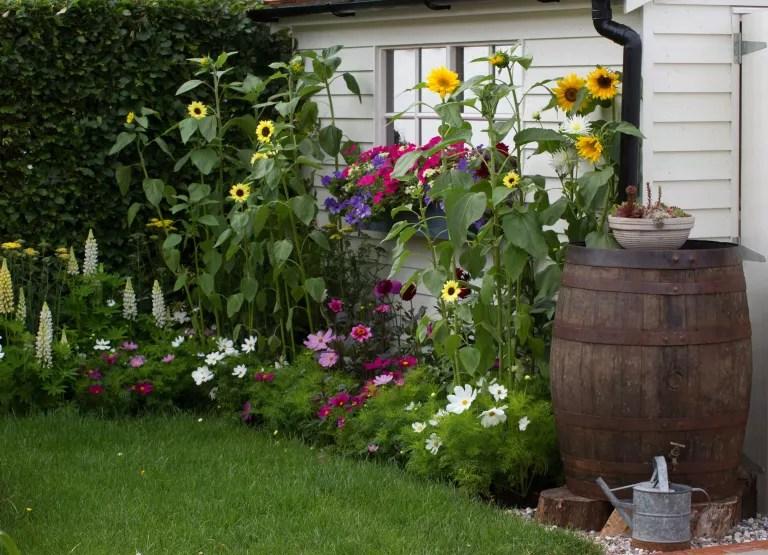 11 jeitos de criar jardins em espaços estreitos e aproveitar as laterais da casa 11 Vision Art NEWS